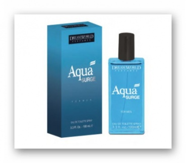 AQUA SURGE Herren Parfum 100 ml Eau de Toilette Dream World